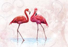 Flamingo fotobehang zachtroze