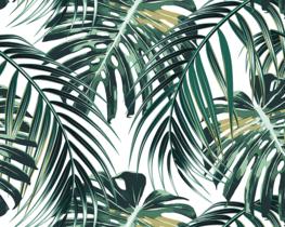 Palmblad behang Tropical Leaves