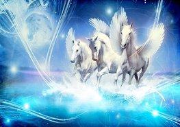 Paarden fotobehang Pegasus blauw L