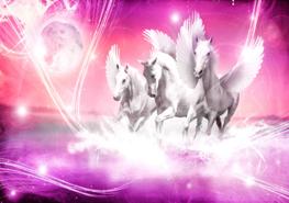 Paarden fotobehang Pegasus roze - Vlies XL