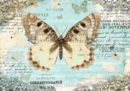 Vlinder fotobehang Postcard