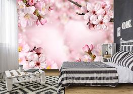 Spring Cherry Blossom fotobehang