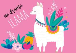 No drama llama behang