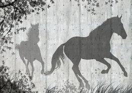 Paarden fotobehang schaduw
