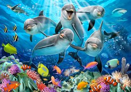 Onderwater behang Dolfijnen