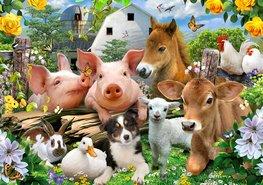 Boerderij behang Dieren