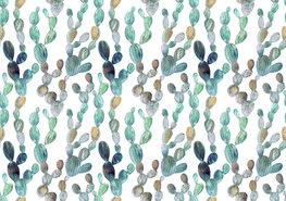 Cactus behang Vijgcactus