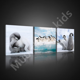 Pinguïn canvas set