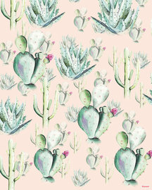 Cactus fotobehang Roze