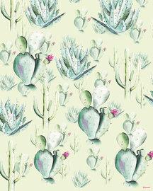 Cactus fotobehang Groen