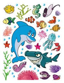 Dolfijn Haai en Vissen muursticker GROOT