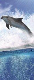 Dolfijn deurposter Vliesbehang