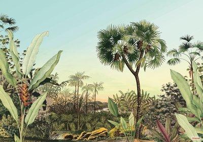 Jungle fotobehang Oasis