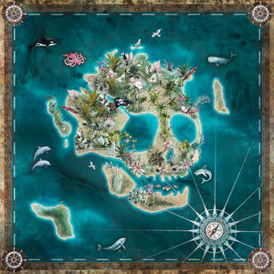 Piraten behang Skull Island