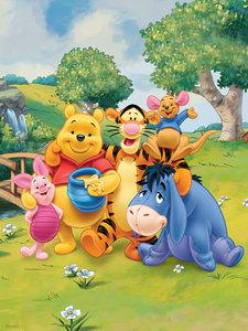 Winnie the Pooh fotobehang tot 275 cm hg