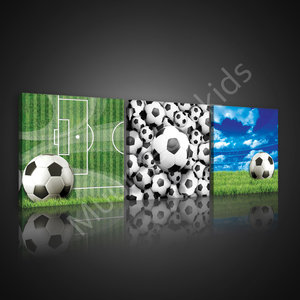 Voetbal canvas set