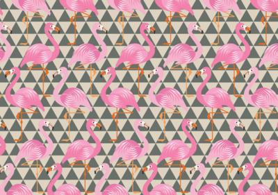 Tiener Kamer Behang.Flamingo Behang