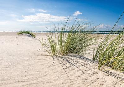 Strand fotobehang helm gras