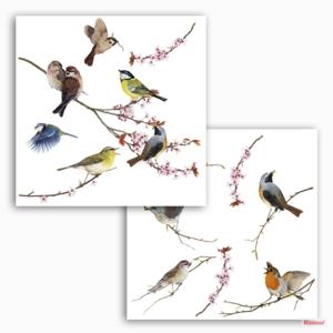 Vogel raamstickers