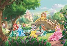 Disney Princess fotobehang Palace Pets XL