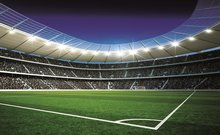 Voetbal poster Stadion 2