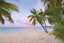 Paradise morning fotobehang