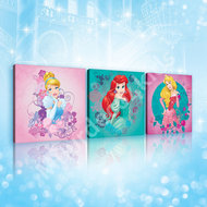 Disney Princess canvas 3-delige set