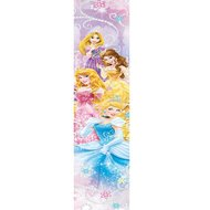 Disney Princess poster banner