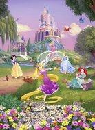 Disney Princess fotobehang Sunset