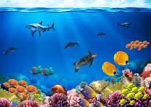 Onderwaterwereld fotobehang