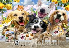 Huisdieren behang Selfie